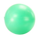 EcoWise 85501 Fitness Ball - 55 cm - Green