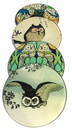 Parastone CS05OWL Owl Paintings Glass Coasters Set of 4 with Storage Stand