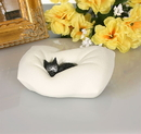 Parastone DUB45 Cat Sleeping on Pillow by Dubout