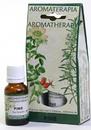 Parastone L-112 Pine (Pino) Aromatherapy Essential Oils