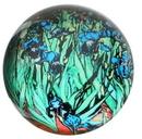 Parastone PGOG2 Irises Glass Paperweight by Van Gogh