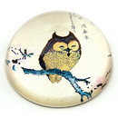 Parastone PJAP1 Japanese Owl on Magnolia Branch Woodblock Glass Paperweight
