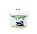 Zoetis 10004019 Clovite® Conditioner 5 Lb
