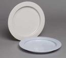 AliMed 812730- Inner Lip Plate - Off White - cs/30