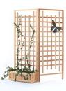 All Things Cedar PL30U-Set 3pc. Planter Set /w Trellis Screen