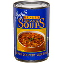 Amy's Hearty French Country Vegetable Soup, Organic, GY0113