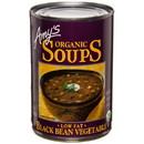 Amy's Black Bean Vegetable Soup, Organic, GY246