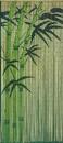 Bamboo54 Green Bamboo Curtain