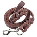 Brybelly 6-foot Braided Leather Dog Leash