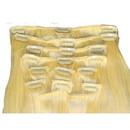 Brybelly #613 Platinum Blonde - 10 inch