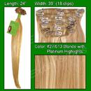 Brybelly #27/613 Golden Blonde w/ Platinum Highlights - 24 inch