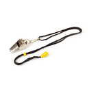 Brybelly Stainless Steel Coach's Whistle with Lanyard