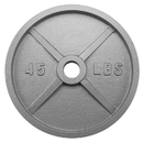 Brybelly 45lb Olympic Style Iron Weight Plate