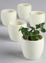 Ivy Lane Design Plain Round Flower Pots - 5 pk