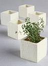 Ivy Lane Design Circle Square Flower Pots