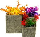 Blue Ribbon Pet Products Square Flower Pot Garden