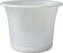 Bloem EP0809 Expressions Planter, Casper White, 8 Inch