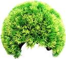 Poppy Pet YM-7225L Moss Cave Hideout
