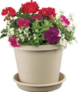 Myers Classic Pot - Sandstone - 8 Inch
