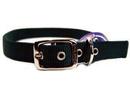 Hamilton Double Thick Nylon Dog Collar - Hunter Green - 1X30 Inch