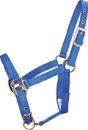 Hamilton Adjustable Chin Horse Halter With Snap - Blue - Foal