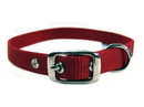 Hamilton Single Thick Nylon Dog Collar - Red - 5/8  X 18