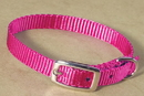 Hamilton Single Thick Nylon Dog Collar - Hot Pink - 3/8  X 12