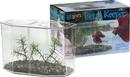 Lee S Aquarium & Pet Betta Keeper - Large