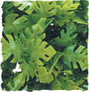 Zoo Med Natural Bush Amazonian Phyllo Plant - Green - Medium/18 Inch