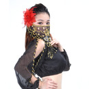 BellyLady Belly Dance Tribal Face Veil With Beads, Halloween Costume Accessory
