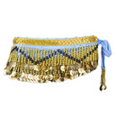 BellyLady Multi-Row Belly Dance Hip scarf, Silver Coins Belly Dance Belt