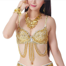 2 PCS Wholesale BellyLady Belly Dance Tribal Sequined Bra Top, Christmas Gift Idea