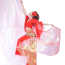 Wholesale BellyLady Transparent Belly Dance Costume Isis Wings With Sticks, Gift Idea