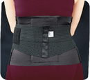 Bird & Cronin Bicro Skin Lumbar Support With Pad