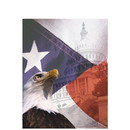 Super Forms TAXCVR3N Folders & Envelopes Other Multi-Purpose Folders Patriotic Folder (TAXCVR3N)