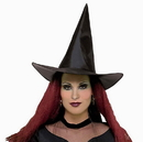 Rubies Costumes 105331 Witch Hat, Adult