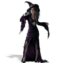 Disguise 133572 Sorceress Young Adult Costume, 7-9