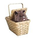 Rubies Costumes 134788 The Wizard of Oz Toto In Basket Deluxe, One Size
