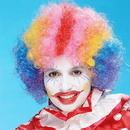 Peter Alan 5067M Rainbow Economy Clown Wig