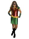 Rubies Costumes 886154-000-S Robin Tween Costume