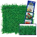 Beistle 192419 Green Grass Tissue Mats