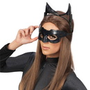 Rubies Costumes Batman The Dark Knight Rises Catwoman Deluxe Accessory Kit (Adult), One size
