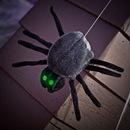Birthday Express 216519 Hanging Dropping Black Spider