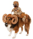 Rubies Costumes 243183 Star Wars Bantha Rider Pet Costume, One Size