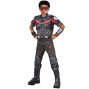 Rubies 245011 Marvel's Captain America: Civil War Boys Deluxe Muscle Chest Falcon Costume, Small (4-6)
