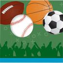 Forum Novelties 262939 Sports Party Luncheon Napkins (16)