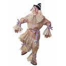 Forum Novelties 270828 Scarecrow Deluxe Adult Costume