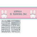 1st Birthday Bunny Giant Party Banner 1ct