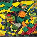 Teenage Mutant Ninja Turtles Beverage Napkin (16)