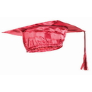 Forum Novelties BB80092 Red Graduation Child Cap - One-Size